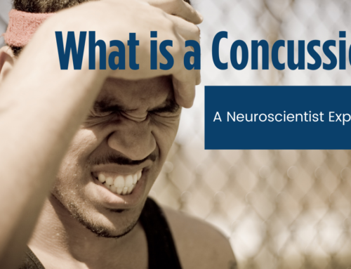 What is a Concussion, How To Test For One, and How To Treat It